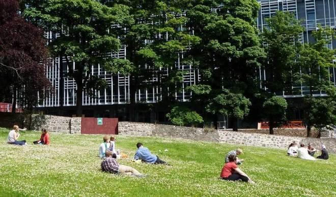 Summer at Foresterhill